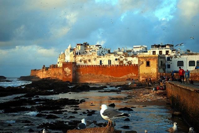 Essaouira : les gnaoua invitent Ayo, Marcus Millers et Brahim Maalouf