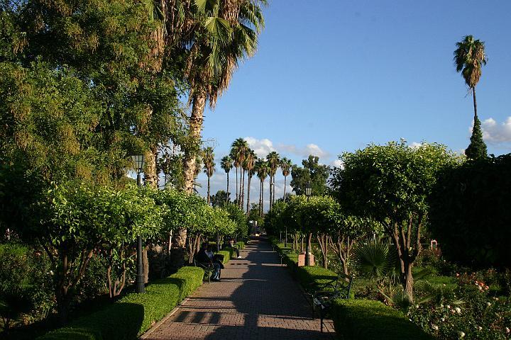Marrakech : des jardins centenaires, un musée à ciel ouvert